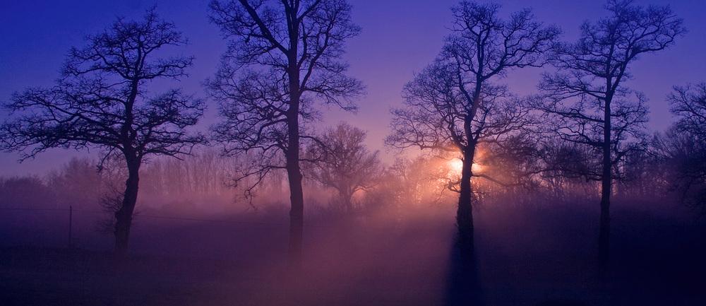 coucher-de-soleil-en-hiver-f0cbf704-98d1-4664-838d-b6902fd99af7